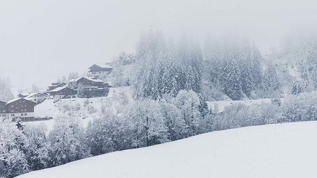 Blick auf verschneite Bäume und Chalets in Adelboden.