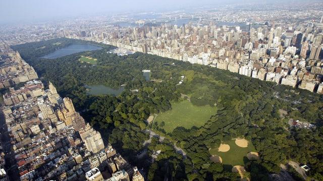 Eine grüne Oase mitten in der Metropole - der New Yorker Central Park
