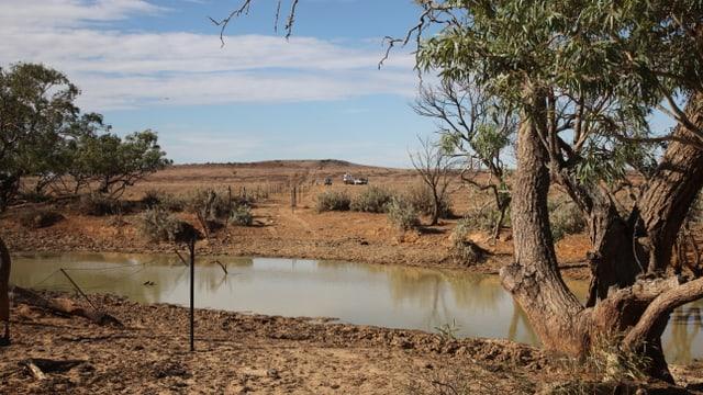 Video «Folge 1: Von Alice Springs bis Marree» abspielen