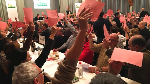 Abstimmung mit Handerheben.