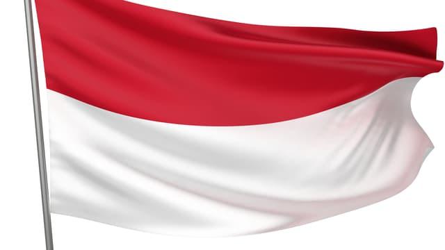 Grafische Darstellung der indonesischen Fahne