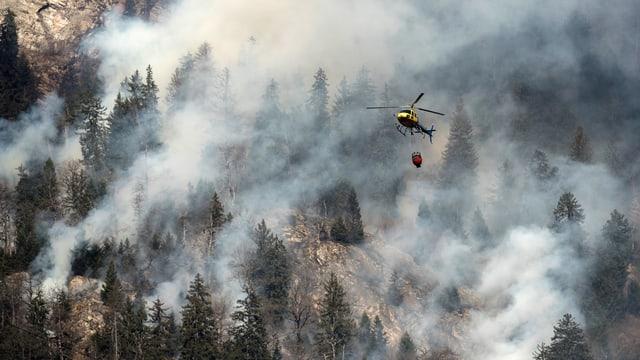 Ein Helikopter löscht einen brennenden Wald.