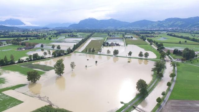 Überschwemmte Felder im St. Galler Rheintal am Samstag.