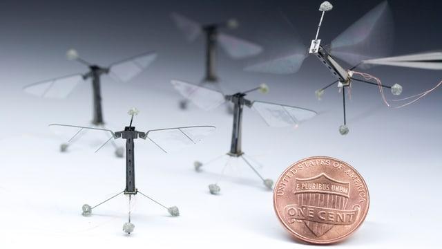 Die Drohnen im Vergleich zu einem One-Cent-Stück