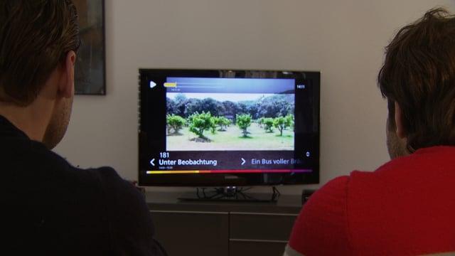 Männer vor Fernseher