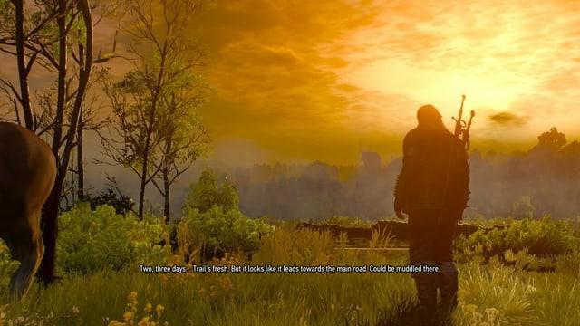 Geralt schaut in den gelben Sonnenuntergang.