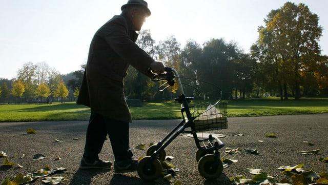 Ein alter Mann spaziert mit einer Gehhilfe in einem Park.