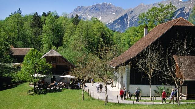 Das Freilichtmuseum Ballenberg an einem schönen Tag vor einem der Holzchalets.