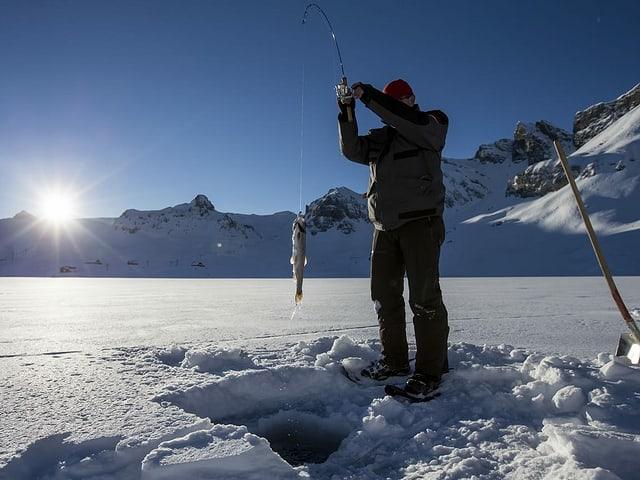 Ein Mann steht auf dem gefrorenen Melchsee. Er hat einen Fisch an seiner Angel.