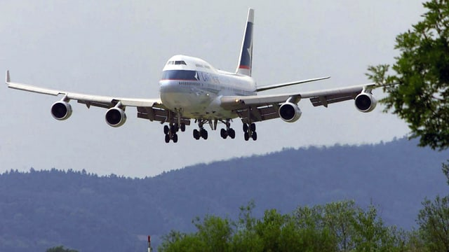 Flugzeug über Baumwipfeln