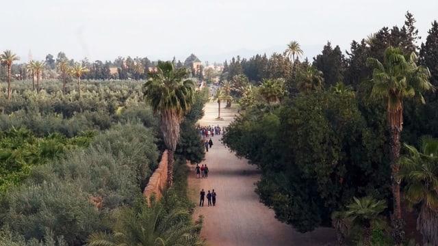 Video «Magische Gärten – Marrakesch: Agdal» abspielen