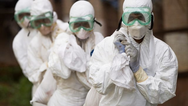 Mitarbeiter des nepalesischen Veterinärdienstes vernichten infizierte Vögel.