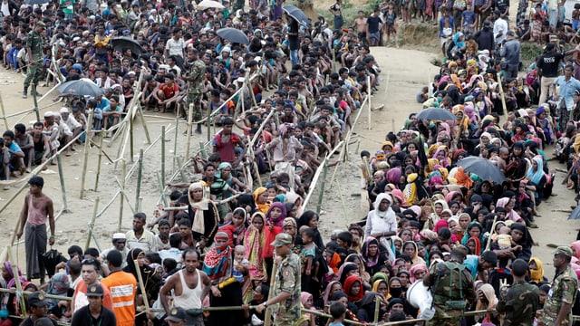 Menschenmenge steht in langen Warteschlangen an.