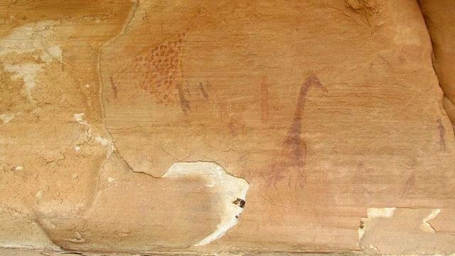 Zwei Giraffen-Zeichnungen auf Stein.