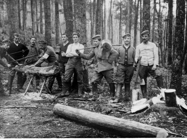 Zahlreiche Männer stehen mit Werkzeugen im Wald.