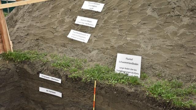 Il profil dal terren sin l'Obere Au a Cuira – rusna cun descrit las differentas parts dal terren.