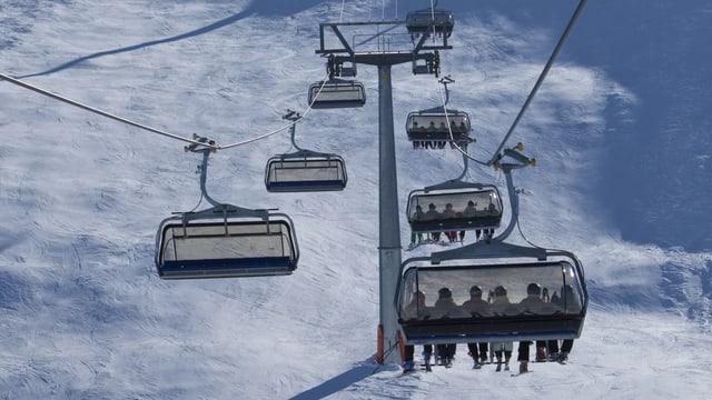 Ina sutgera cun skiunzas e skiunzs.