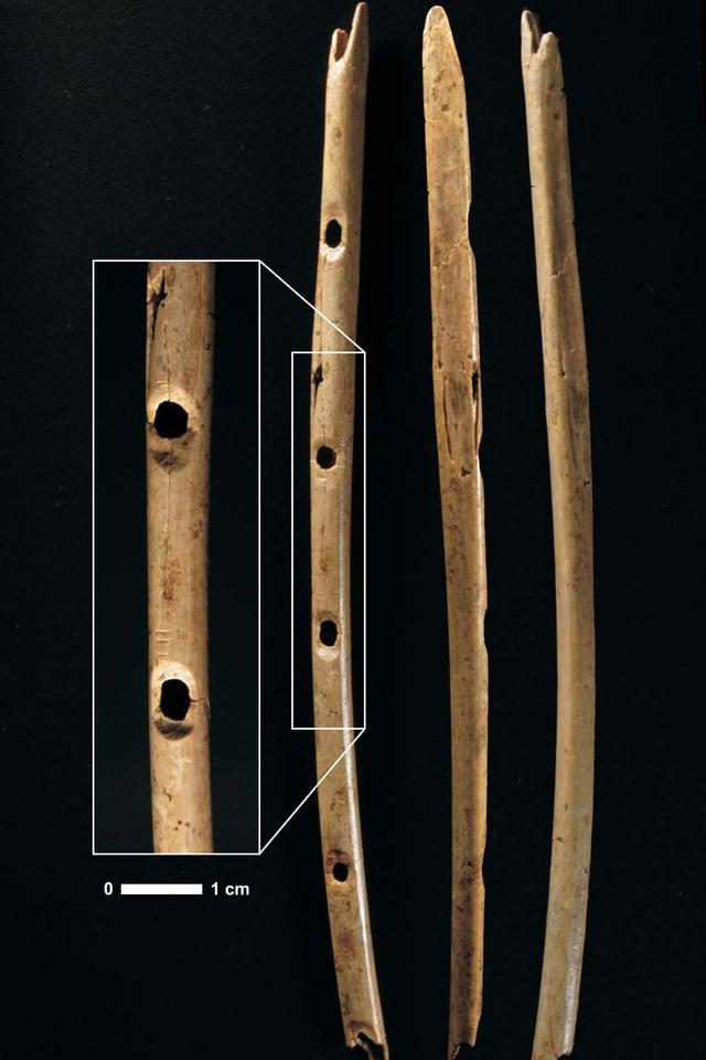 Diese Flöte,die vor sechs Jahren in der Höhle Hohle Fels bei Schelklingen entdeckt wurde, entstand aus einem Flügelknochen eines Gänsegeiers.
