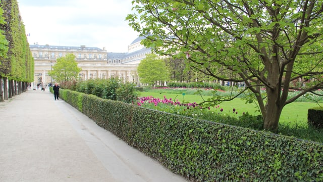 Jardin du Palais Royal.