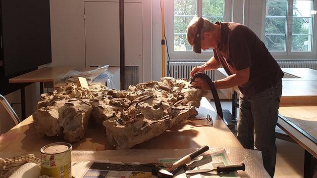 Präparator mit Staubsauger in der Hand saugt einen fossilen Meeresboden ab