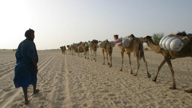 Ein Bild aus friedlichen Zeiten: Eine Karawane verlässt Timbuktu.