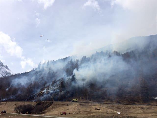 Ein Helikopter kreist über dem Bergwald, aus dem Rauchaufsteigt.