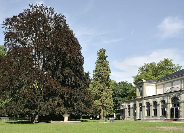 Der Kurpark von Baden