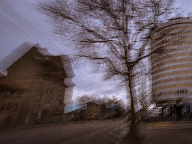 Baum vor Strasse gesäumt von Haus links und Silberturm rechts