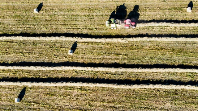 Ein Feld mit Heuballen von oben.