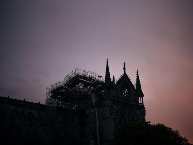 Notre-Dame am Morgen