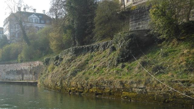 Ein Ausschnitt des Grossbasler Rheinufers.