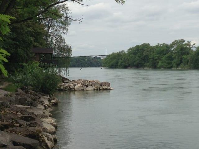 Buhne am Ufer