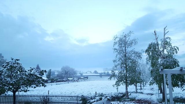Landschaft mit Bäumen und Schnee
