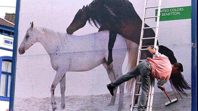 Benetton-Werbeplakat aus den 80er-Jahren mit zwei Pferden.