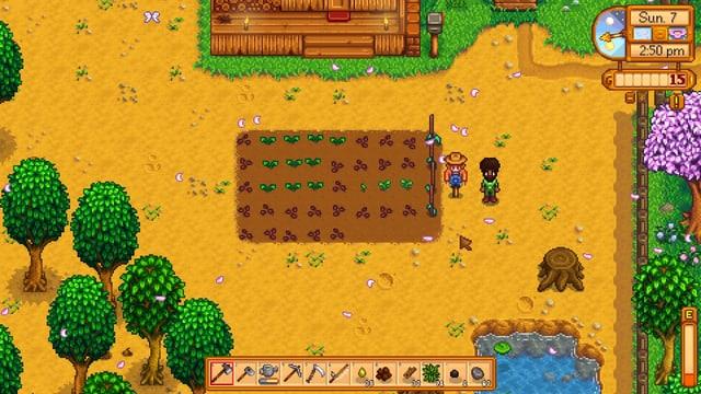 Ein erstes kleines Feld mit Pastinaken, Bohnen und einer Vogelscheuche.