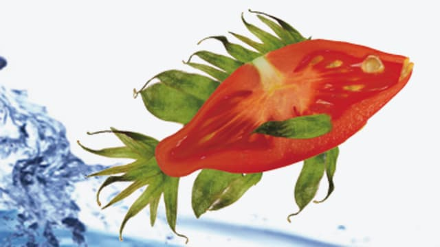 Eine Tomatenscheibe in Fischform, Finnen und Flossen sind aus Petersilie hinzugefügt.