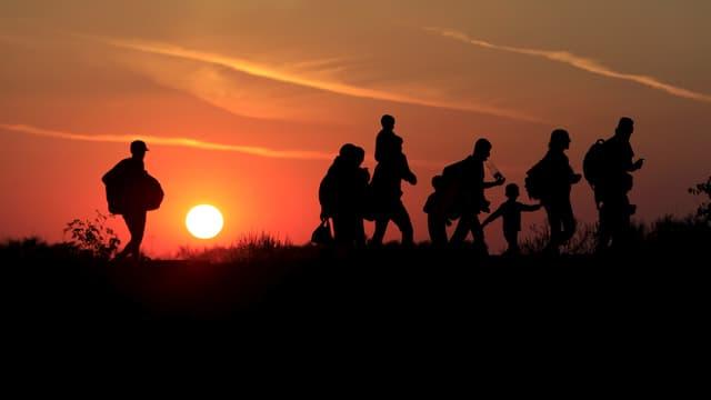 Flüchltinge, hinter ihnen geht die Sonne unter (30. August an der ungarisch-serbischen Grenze)