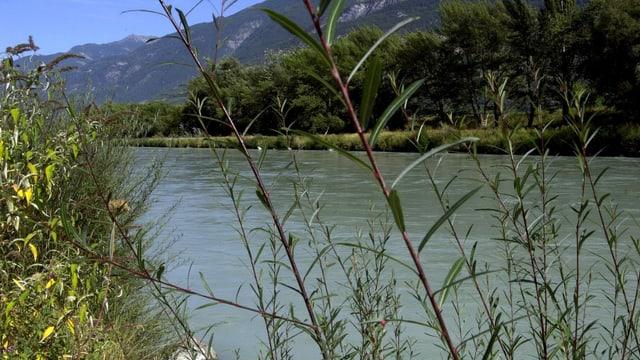 Fluss bei schönem Wetter