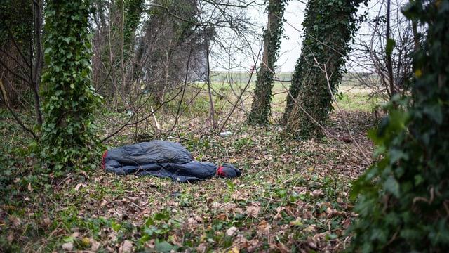 Ein Schlafsack im Wald.