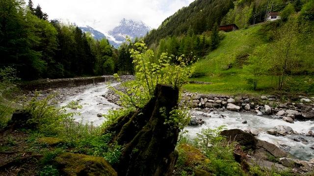 Lauf des Schächenbachs