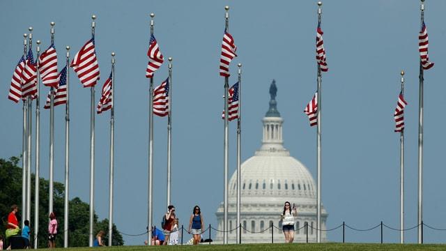 Symbolbild: US-Flaggen vor dem Capitol.