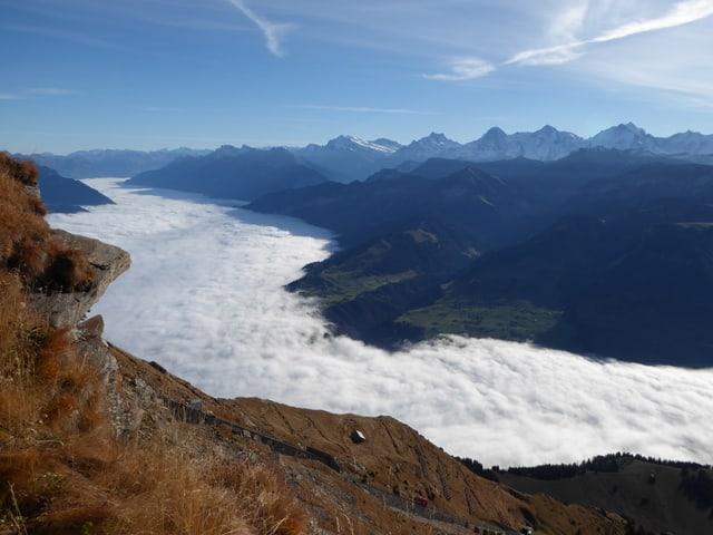 Aussicht von einem Berg in ein nebelgefülltes Tal. Die Nebeloberfläche hat kleine Hügel und Täler.