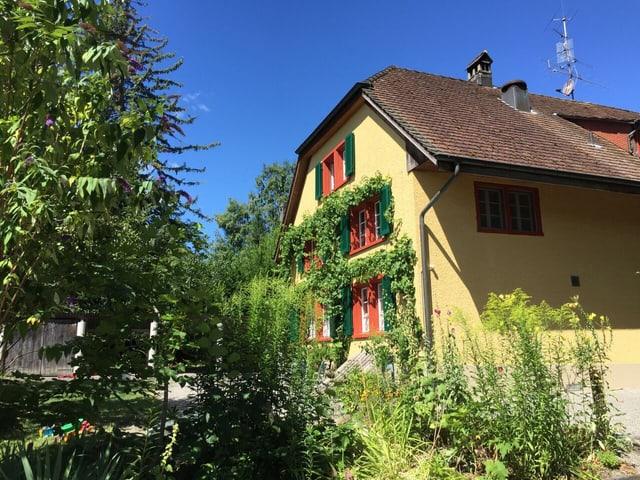 Gelbes Haus, umgeben von Pflanzen.