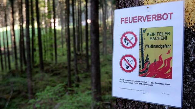 Ein Schild warnt in einem Wald vor dem Entfachen von Feuer.