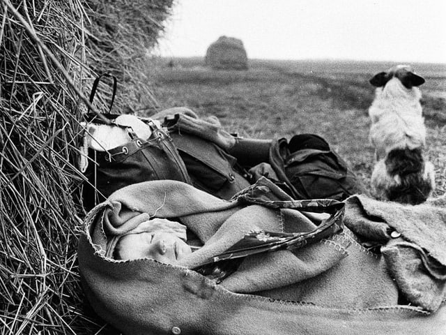 Ein Kind schläft eingepackt in Decken auf einem Feld.