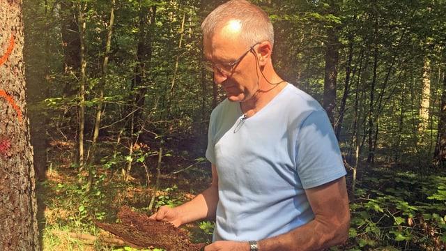 Mann im Wald schaut Holzstück an.