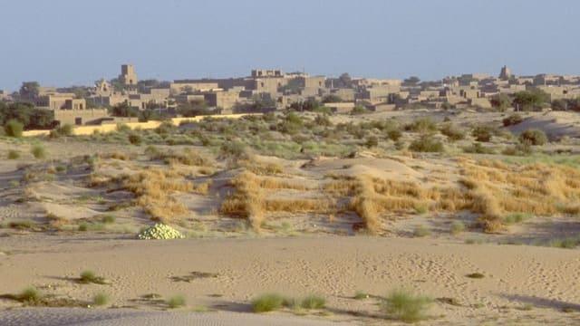 Lehmgebäude und die Wüste Sahara im Vordergrund.