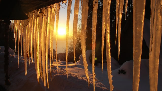 Eiszapfen leuchten rötlich im Sonnenlicht.