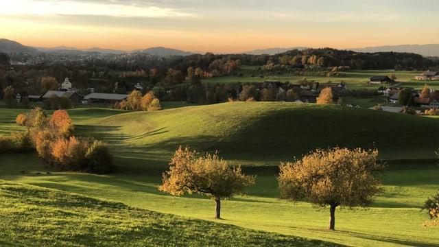 Blick über grüne Wiesen und auch die Bäume sind noch nicht stark verfärbt.