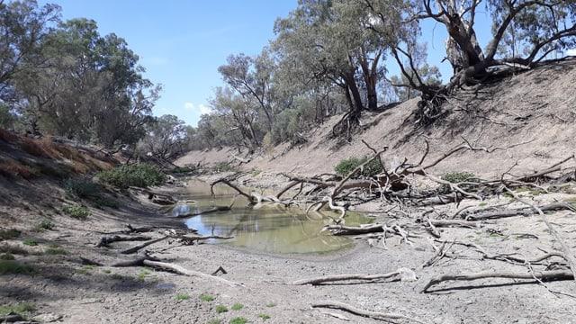 Ausgetrocknetes Flussbet mit einer kleinen Pfütze.
